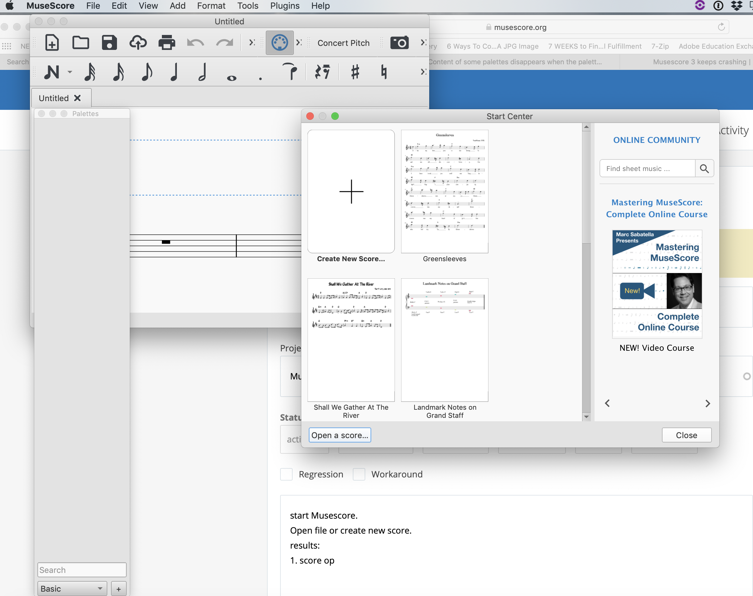 Basic and Advanced Palettes are empty   MuseScore