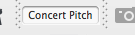 Concert pitch button