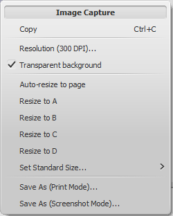 Image capture context menu