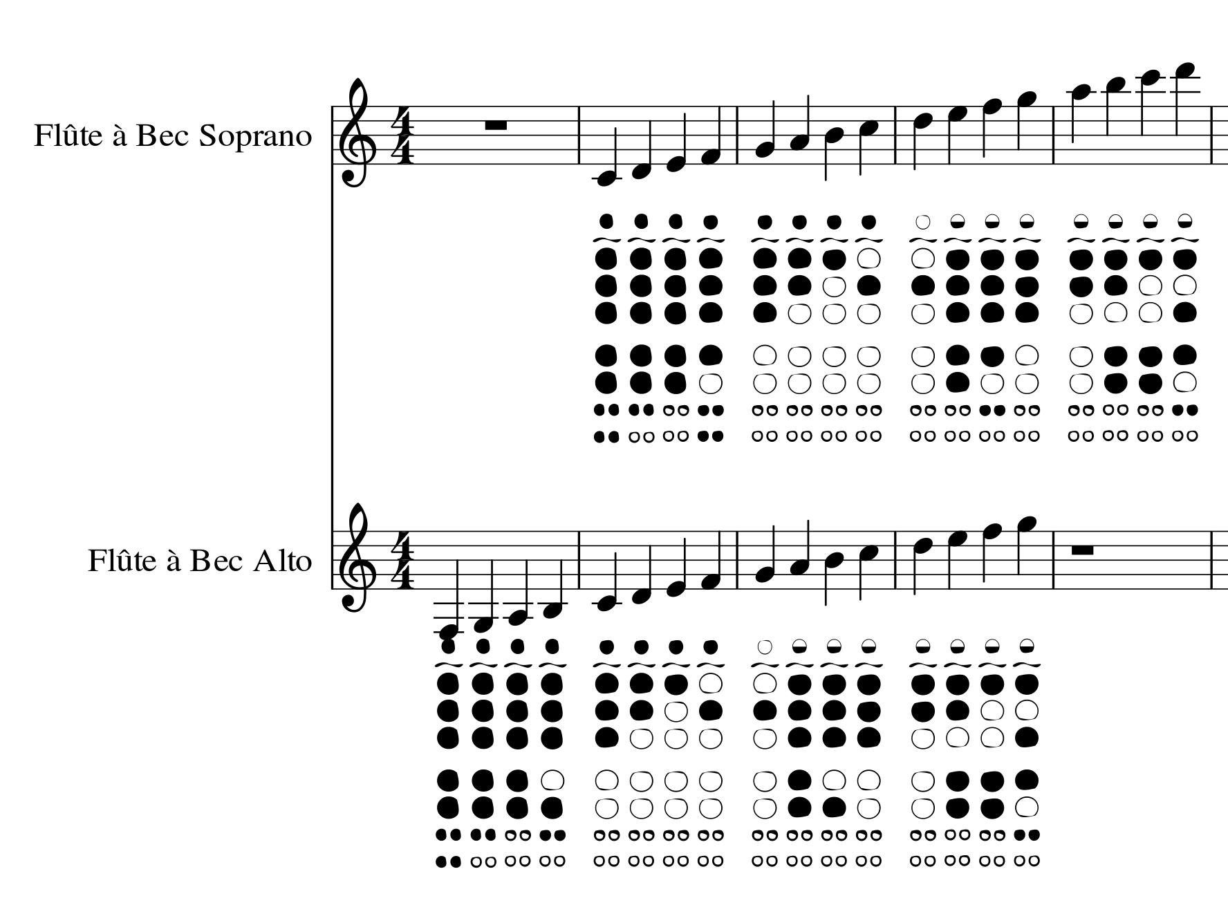 partition flute avec note ecrite